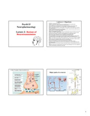 Lecture_2-Neurotransmission_Review (4slides per page)