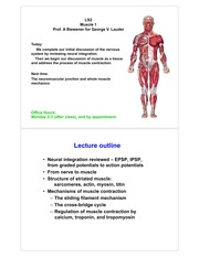 LS2.Lecture9.2013.Muscle1