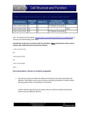 CellSizeWorksheet.docx
