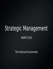 5333 Lecture 5 - The Internal Environment
