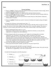 Enzyme - Total Marks 30 Name Enzyme Worksheet 1 What is a ...