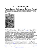 Archaeoptery1