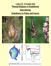 Lecture 10s_Endothermy and Heterothermy in Mammals__Endothermy in Fishes and Insects_13 Oct 2016.ppt