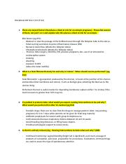 Worksheet OB Test 4 (1).docx