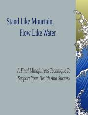 Stand Like Mountain,            Flow Like Water.ppt
