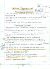 Cellular Reproduction Notes