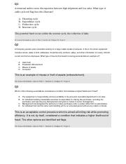 Section II -- ch D-- Qs and As.docx