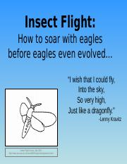 Insect_Flight.students