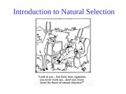 2) Introduction to Natural Selection
