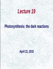 Huxford_lecture_19