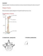 lecture 2 bones and joints