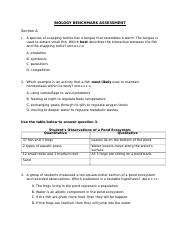 benchmark questions and answers.docx
