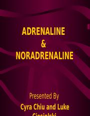 Adrenalin.ppt