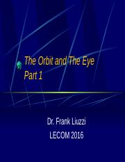 The Orbit and The Eye Part 1 2016.pptx