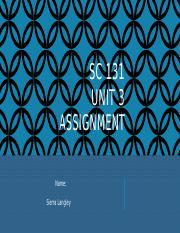 Unit 3 Assignment PowerPoint Template