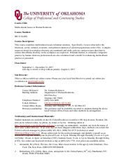 Syllabus ON LINE Multi Cultural Issues .pdf