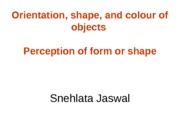 OPM - Perception of Form or Shape