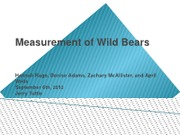 Measurements of Wild Bears Team A Assignment