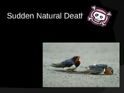 8 - Sudden Natural Death Part1