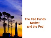 The+Fed+Funds+Market+-+F11