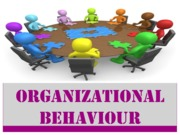 Behaviour in an organization (Presentation)