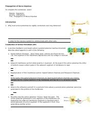 Propagation of nerve impulses.doc