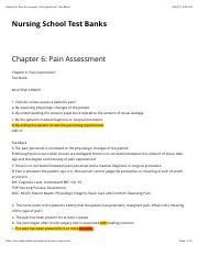 Chapter 6 Pain Assessment.pdf