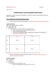 Codominance and Incomplete Dominance Punnett Square WS.docx