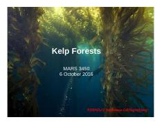 Lecture 16 6 Oct Kelp Forests