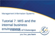 MIS and the Internal Business Environment