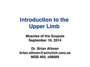 Allman- UL Lecture 1- Intro _ Scapular Muscles- 9-16-2014- upload copy