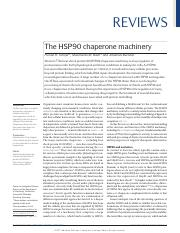 The HSP90 Chaperone Machinery.pdf