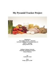 My Pyramid Tracker Project