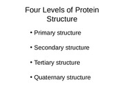 [BIOL 4093] Lecture 3-Protein structure and function