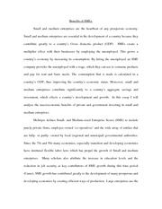 Small and medium enterprises essay