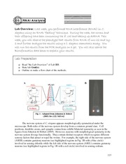 2010 Bio 311 Lab D Manual (part 3)