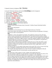 Assignment   Integumentary (1).docx