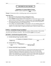 NUSC 1165_Assignment 2_Energy Balance_Fall_2016-2
