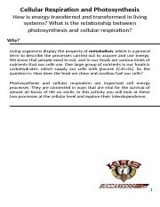 POGIL Cellular Respiration and Photosynthesis.docx