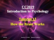 Tutorial 13 How the Brain Works