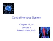 14. CNS, Lecture 1_posted