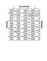 Genetic Code Table.pdf