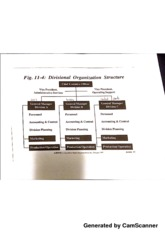 World of Business Divisional Organizational Structure