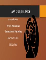 APA GUILDELINES.pptx
