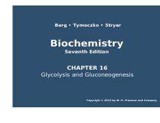 Chapter 18pdf berg tymoczko stryer biochemistry seventh edition 52 pages chapter 16pdf fandeluxe Choice Image