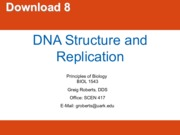 Principles of Biology DNA Structure and Replication