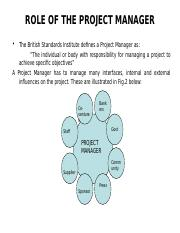 3 Project Manager.PPT