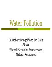 Water Pollution.Bringolf_Abbas_updated.ppt