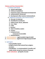 bio of insect exam 1