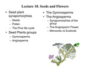 Lecture+18+selected+unsorted seeds and flowers